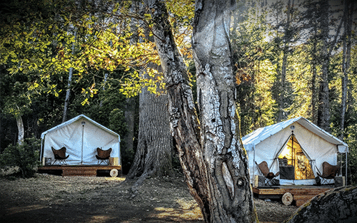 Glamping at Mendocino Grove