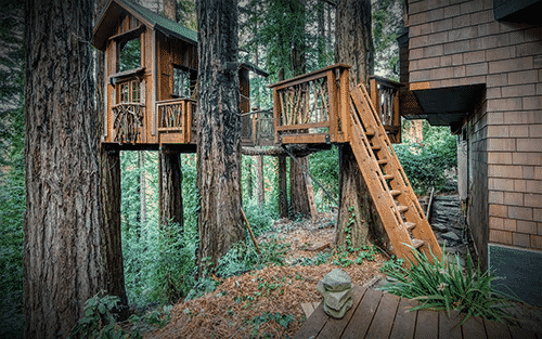 Treehouse Camping in Northern California