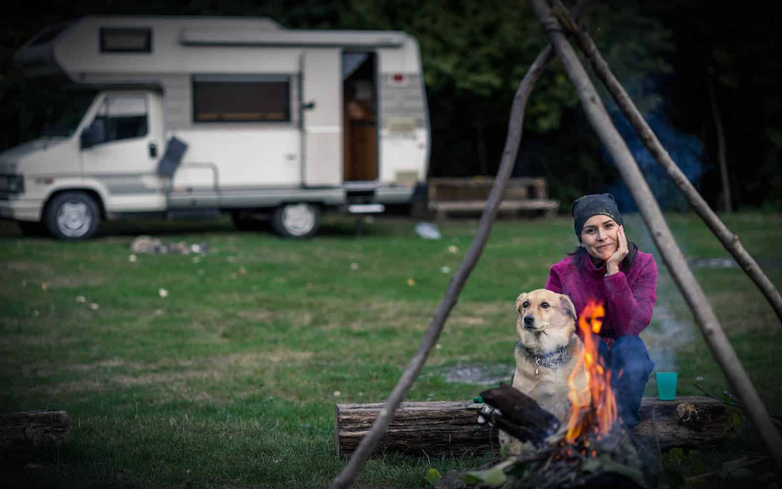 Necessary Dog Camping Accessories